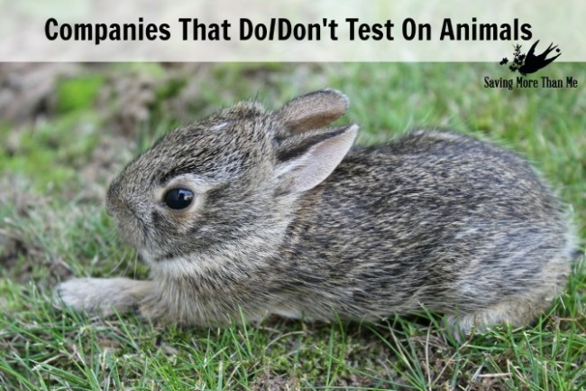 Companies That Do/Don't Test On Animals & My Pledge - Saving More Than Me savingmorethanme.com