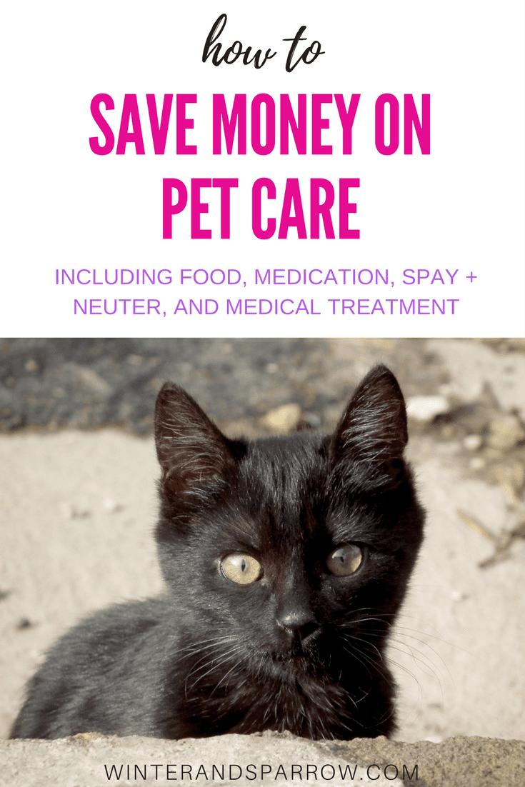 How To Save Money On Pet Care winterandsparrow.com