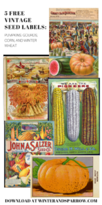 5 Free Vintage Seed Labels: Pumpkins, Gourds, Corn, and Winter Wheat