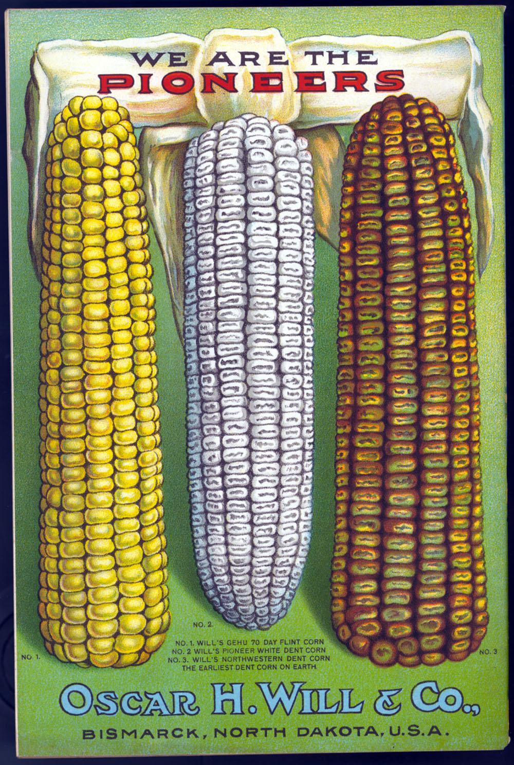 Vintage Corn 8