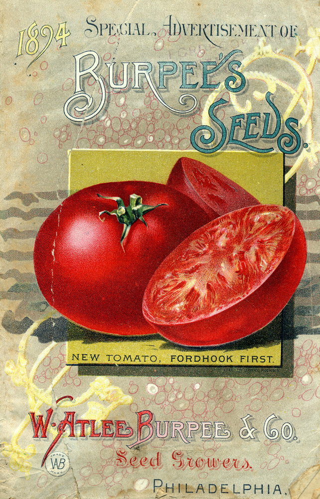 Five Free Vintage Images From Burpee's Seed Catalogs