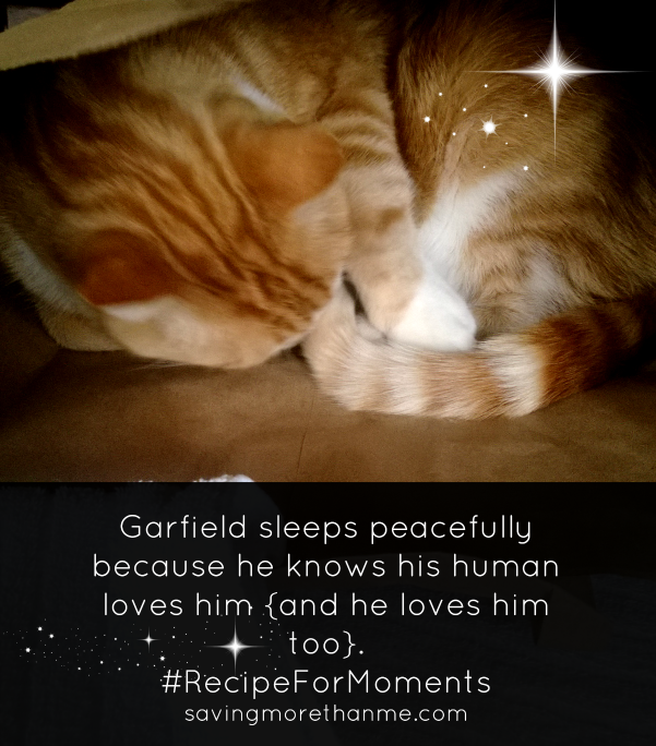 Garfield knows he is loved #RecipeForMoments #ad