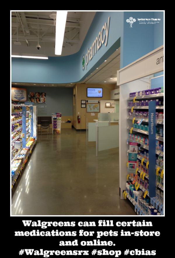 Sick Pet? Save Time and Money By Filling Your Pet's Prescription @Walgreens #WalgreensRX #shop