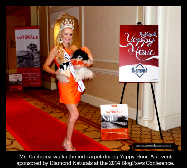 Diamond Naturals sponsored the Red Carpet Yappy Hour at #blogpaws #diamondnaturals Ms. California was in attendance.