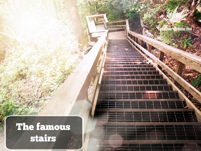 the famous stairs--Getting Diagnosed With Multiple Sclerosis {A Series}: The Event That Triggered It All #CureMS savingmorethanme.com