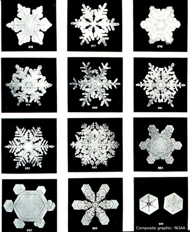 Source: NOAA noaa.gov All About Snowflakes--Plus Free Coloring Pages/Templates, Word Search, Clip Art, Backgrounds, & Gift Tag savingmorethanme.com