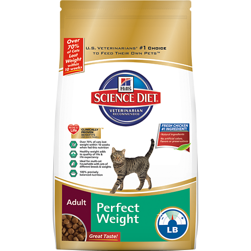 courtesy of hillspet.com Gracie Gets Closer To Her Perfect Weight #Perfect Weight #ad