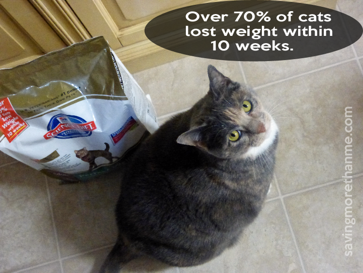 Gracie Gets Closer To Her Perfect Weight #Perfect Weight #ad savingmorethanme.com