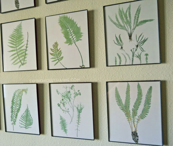 DIY Botanical Gallery Wall {Plus 4 Free Fern Prints} savingmorethanme.com