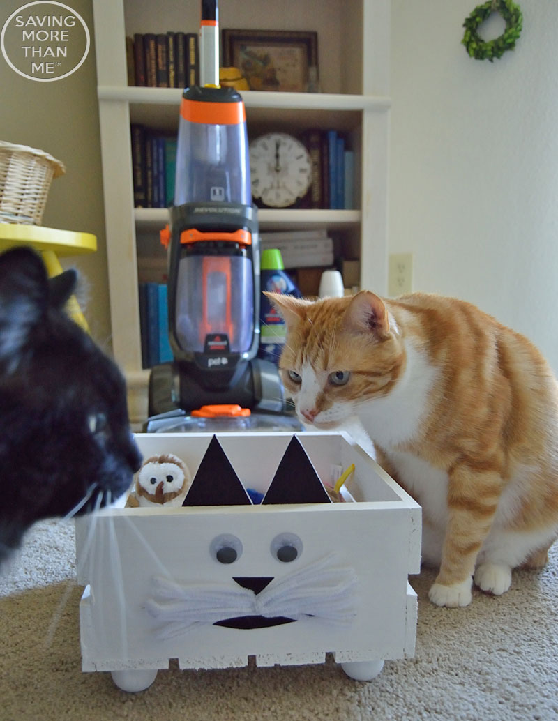 Conquering Cat Messes With A DIY CAT Toy Box + Giveaway {ad} #CleanForTheHolidays