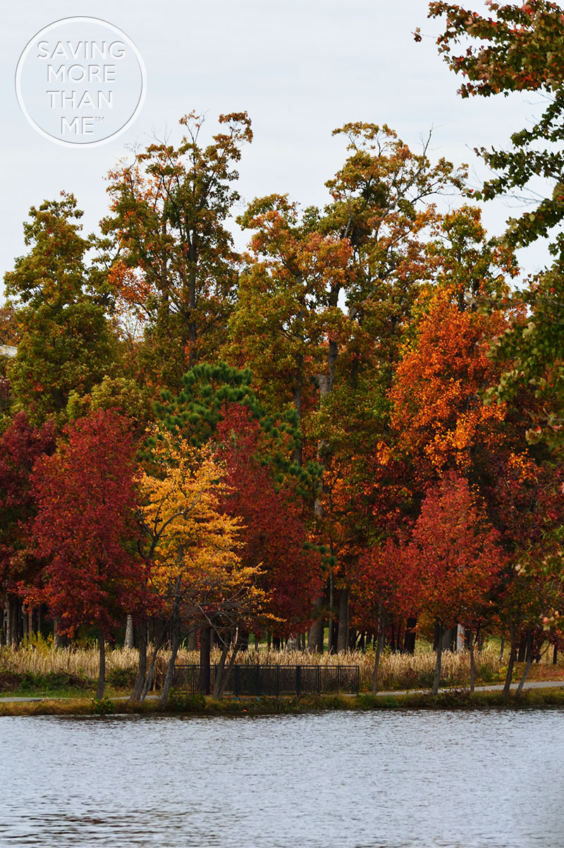 3rd Annual Fall In Virginia Photos #FallInVA