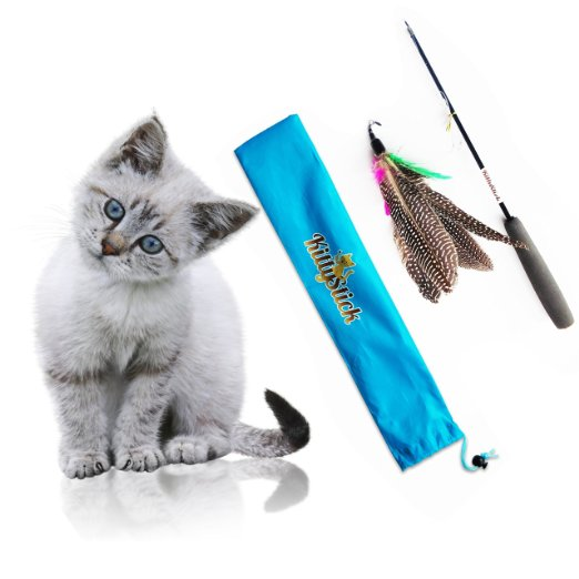5 Gifts For Curious and Carnivorous Cats Easyology Pets Feather KittyStick Cat Toy