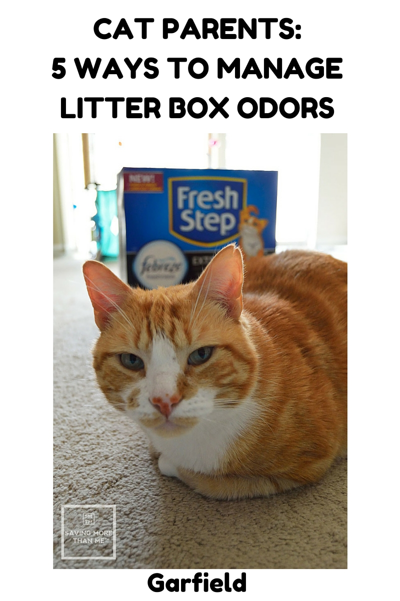 Cat Parents:  5 Ways To Manage Litter Box Odors @freshsteplitter