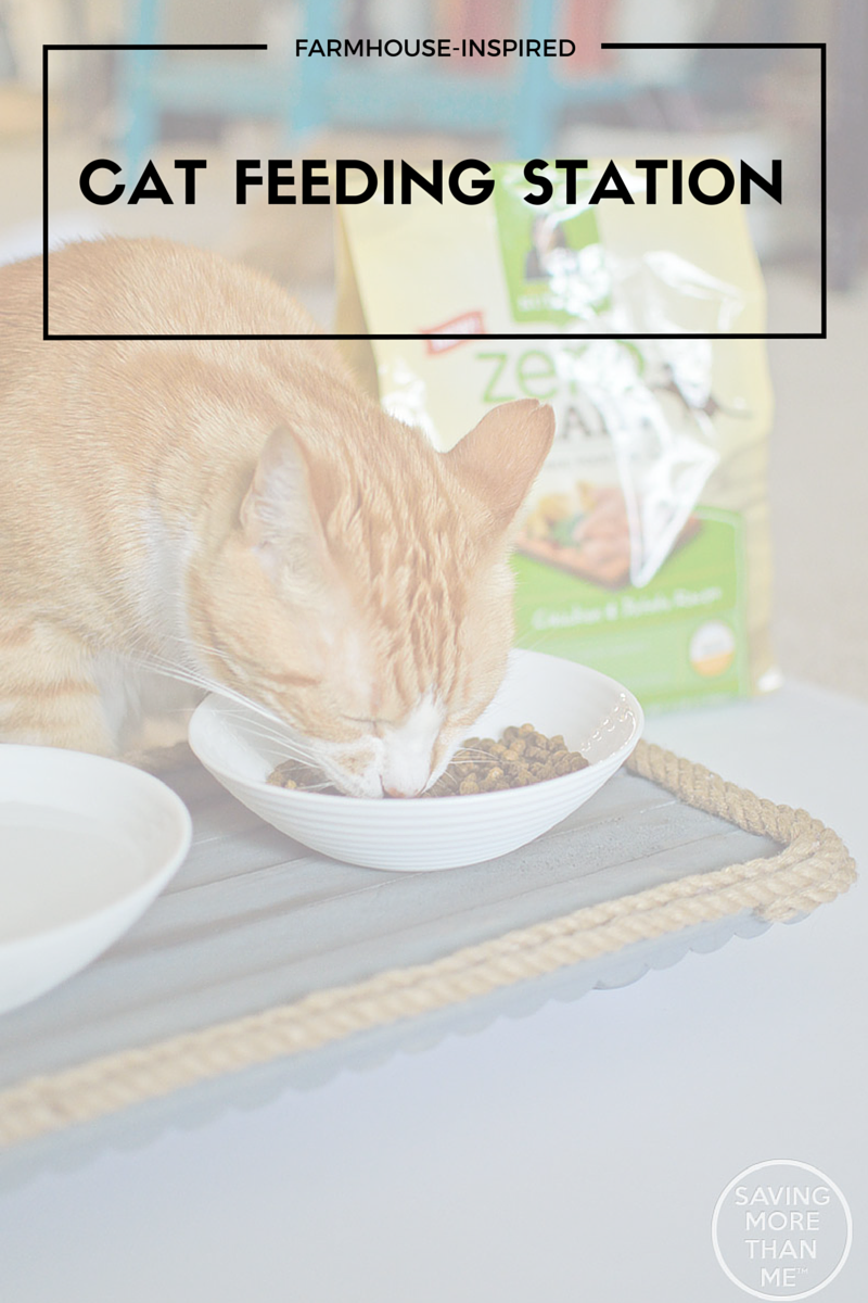 Farmhouse-Inspired Cat Feeding Station