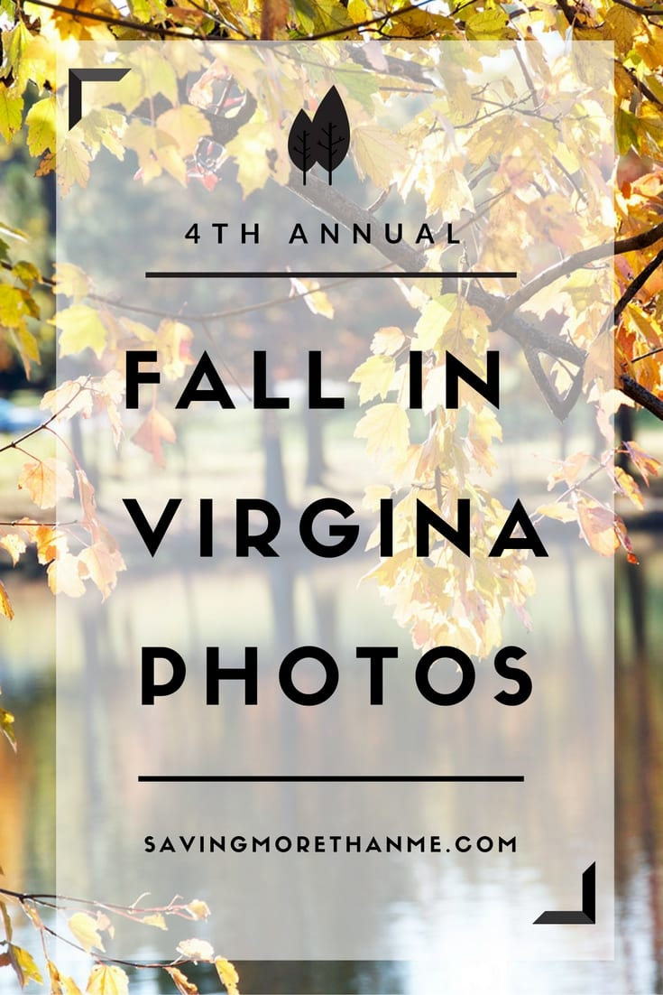 Fourth Annual Fall In Virginia Photos