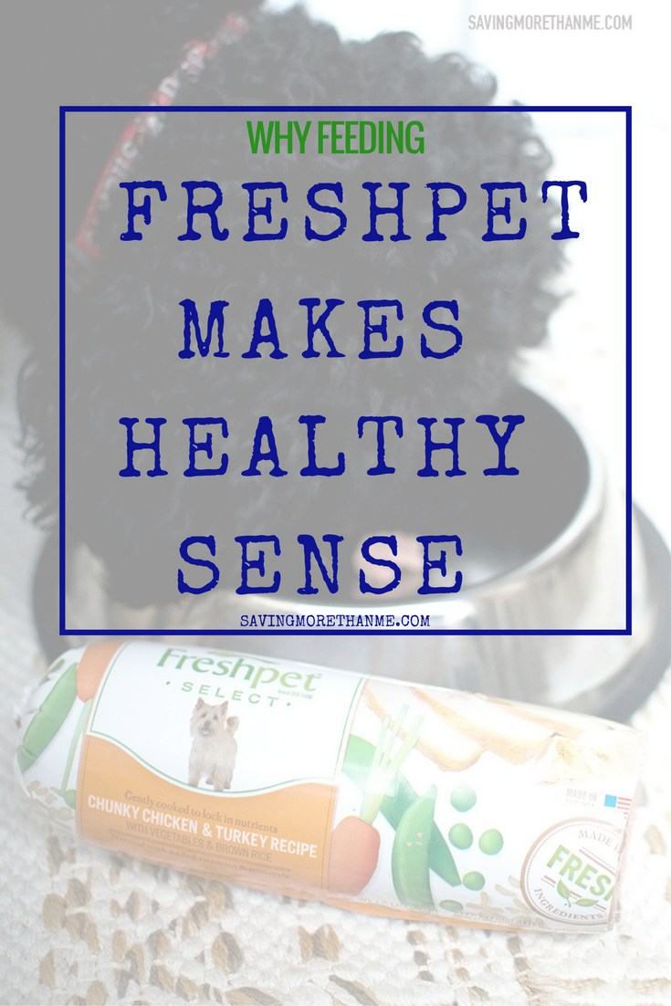 Why Feeding Freshpet Makes Healthy Sense @Freshpet #FreshpetEffect Ad