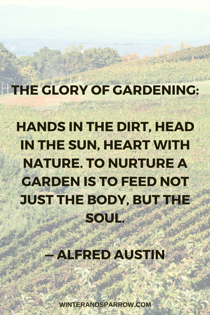 Ten Gardening Quotes For Nature Lovers winterandsparrow.com