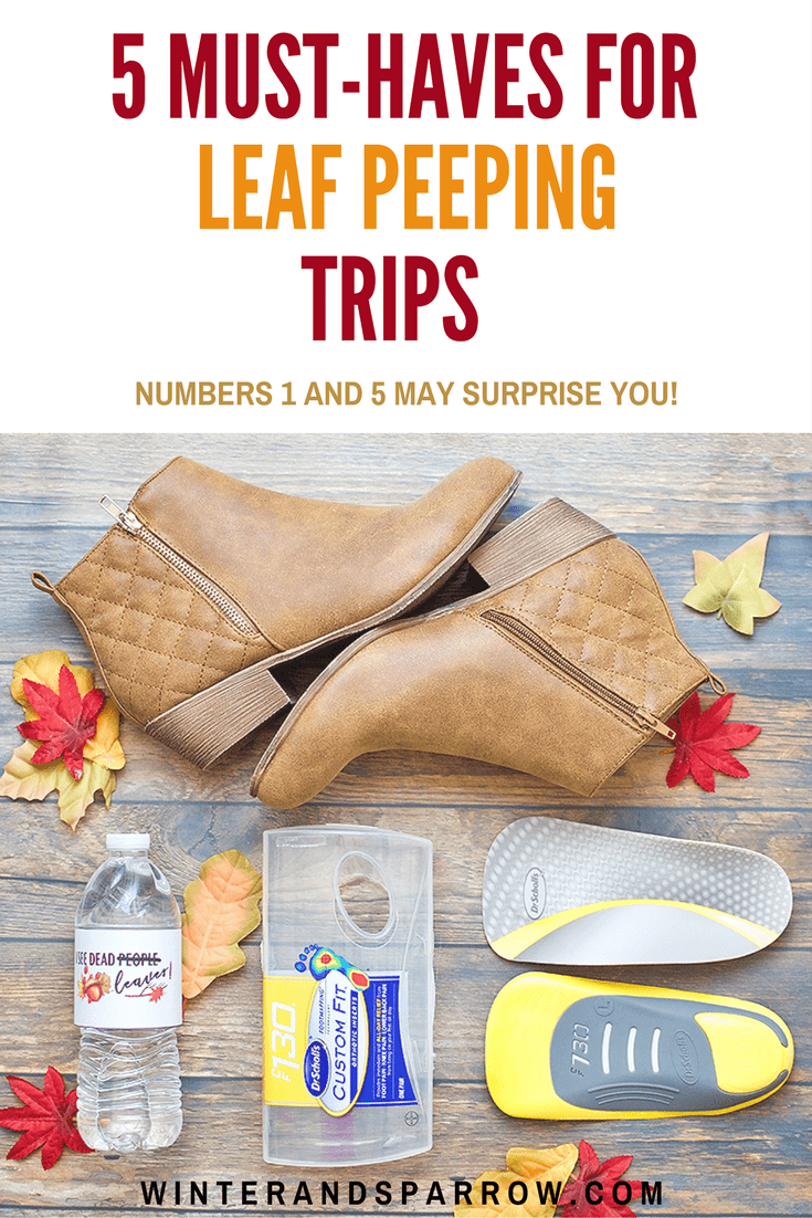 #Advertisement 5 Must-Haves For Leaf Peeping Trips  (Numbers 1 + 5 May Surprise You) #CustomFitRelief #DrScholls