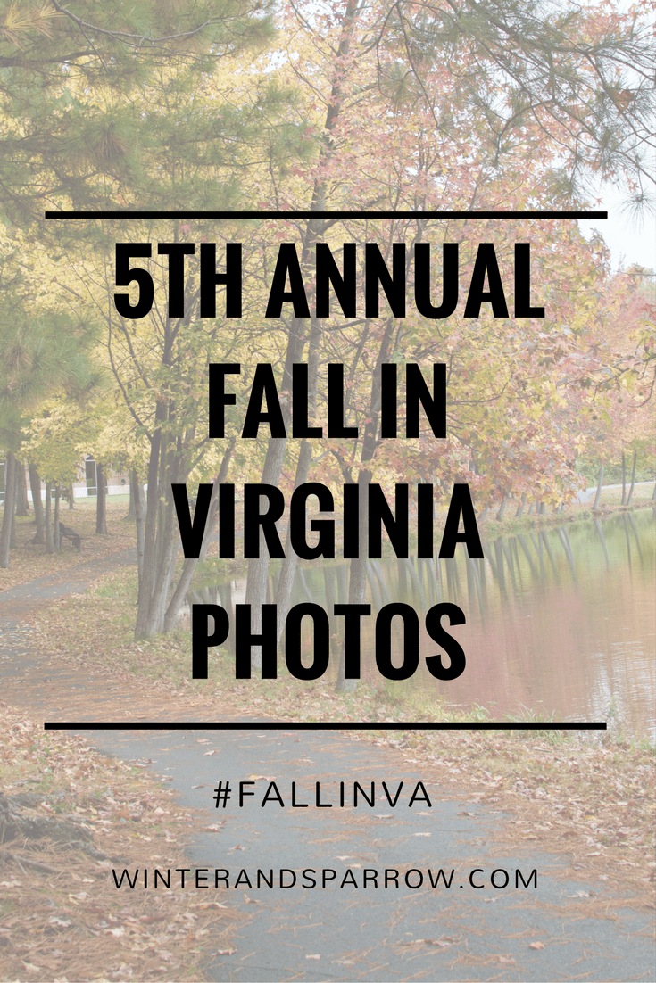 Fifth Annual Fall In Virginia Photos With Two Free Downloads #FallInVA