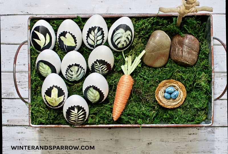 DIY: Learn How To Make Decorative Botanical Easter Eggs winterandsparrow.com